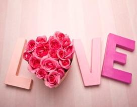 Tình yêu… màu mè