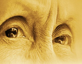 Đừng bỏ quên đôi mắt cha mẹ