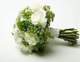 30 - Ai bảo phải cưới?