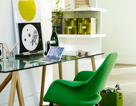 Ý tưởng xanh cho ngôi nhà
