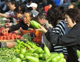 """Người Trung Quốc """"xoay"""" đủ kiểu tránh thực phẩm bẩn"""