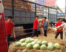 PICO tặng 2.000 trái dưa hấu cho khách hàng