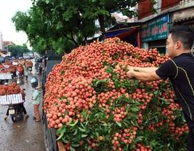 Cảnh giác với chiêu thu mua nông sản lạ của thương lái Trung Quốc
