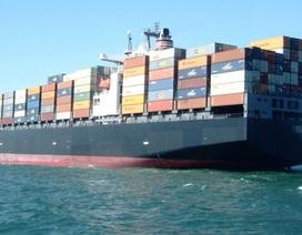 Thanh tra 20 hãng tàu biển nước ngoài trong tháng 4