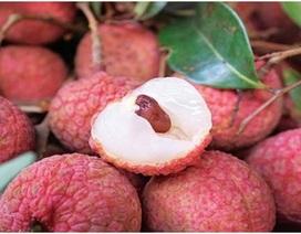 Bộ trưởng Công Thương nói về đường xuất ngoại của trái cây Việt