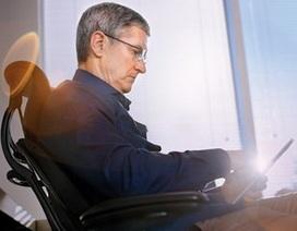 CEO Apple Tim Cook tự hào là người đồng tính
