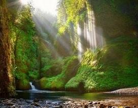 Tuyệt đẹp bộ sưu tập hình nền thiên nhiên đầy sắc màu