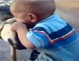 """Clip hài hước """"chú bé tức giận cắn cả chó"""" nổi bật nhất Internet tuần qua"""