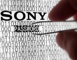 """Sony Pictures bị hacker tấn công vì """"hớ hênh"""" trong bảo mật?"""