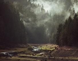 Những tác phẩm nhiếp ảnh tuyệt đẹp được chụp bằng iPhone 6 Plus