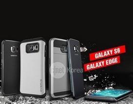 Lộ ảnh chính thức Galaxy S6 sở hữu màn hình cong cả 2 cạnh