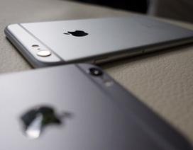 Apple đã cải tiến camera trên các phiên bản iPhone như thế nào?