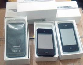 """Phát hiện hơn 4.000 chiếc """"HiPhone5"""""""