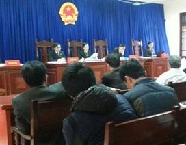 Tòa phúc thẩm bác yêu cầu đòi bồi thường cho ông Đoàn Văn Vươn