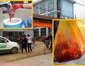 Hà Nội: Nhau thai người được bán như...thịt lợn