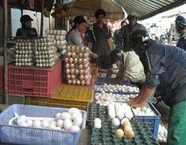 Sự thực về trứng gà ung công hiệu hơn cả... Viagra?!