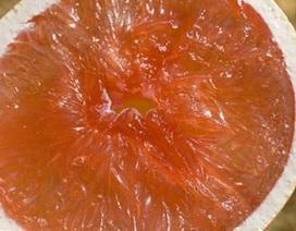 Những thực phẩm đơn giản chống ung thư gan