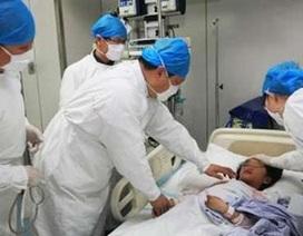 WHO: Thêm 4 người tử vong do chủng cúm gia cầm mới tại Trung Quốc