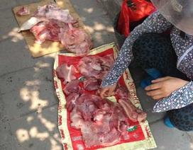Kinh hoàng chợ thịt ruồi bu chân cầu Thăng Long