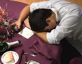 Dược thảo bảo vệ gan, giúp phòng tránh tác hại của bia rượu