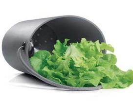 Những rau quả giúp bảo vệ gan