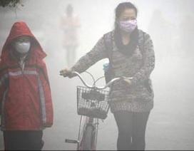 Xuất hiện bệnh nhi ung thư phổi do ô nhiễm không khí