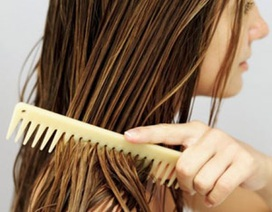 Rụng tóc do da đầu dầu - Phải trị từ gốc