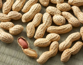 Những điều nên biết về dị ứng đậu phộng