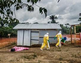 """""""Sống trong sợ hãi"""" nơi tâm dịch Ebola"""