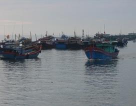 Tiếp nhận 60 ngư dân Quảng Ngãi bị phía Úc bắt giữ