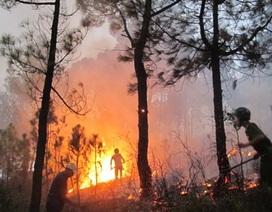 1 chiến sĩ bộ đội hy sinh khi dập lửa cháy rừng