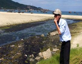 """Những bãi biển """"bốc mùi"""""""