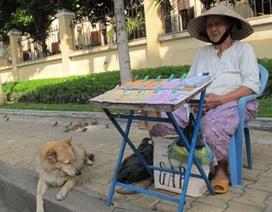 Chuyện bà cụ bán vé số cùng chú chó và đàn chim sẻ