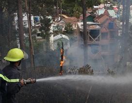 Cháy trong khuôn viên Dinh Tỉnh trưởng cũ