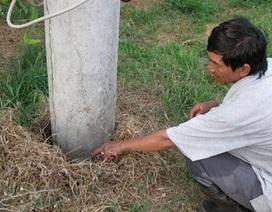 Bình Thuận: Tiếng nước sôi phát ra từ lòng đất