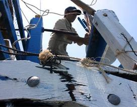 Tàu cá Quảng Ngãi bị 16 tàu Trung Quốc truy đuổi trên biển Đông