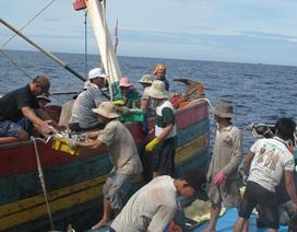 14 ngư dân mất tích bí ẩn