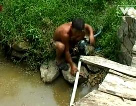 Cả làng ăn uống nước ruộng
