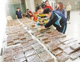 Cục Hàng không nhận lỗi hệ thống vụ lọt 600 bánh heroin