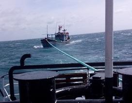 Cứu 11 thuyền viên hoảng loạn sau một đêm gặp nạn trên biển