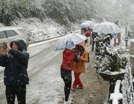 Tuyết lại rơi trắng núi ở Sa Pa