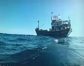 """Chuyện chưa kể về kiểm ngư và ngư dân trên """"điểm nóng"""" Hoàng Sa"""
