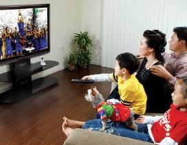Số hóa truyền hình: Đã xem được 29 kênh, 3 kênh HD