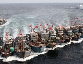 Sự hấp dẫn của Biển Đông