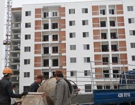 Thí điểm nhà cho thuê cao nhất 65 nghìn đồng/m2/tháng