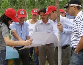 Bị quốc tế soi, đại gia Việt hoa mắt, nổi nóng