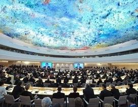 Việt Nam trúng cử Hội đồng Nhân quyền Liên hợp quốc với số phiếu cao nhất