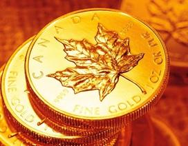 Giá vàng năm 2014 sẽ tiếp tục lao dốc?