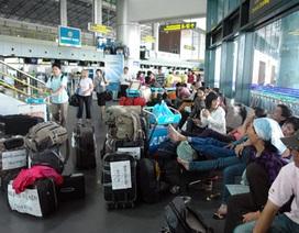 3 ngày Tết, khách đến sân bay Nội Bài tăng mạnh