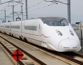 Hé lộ vụ gian lận đấu thầu tuyến tàu siêu tốc ở Nhật Bản